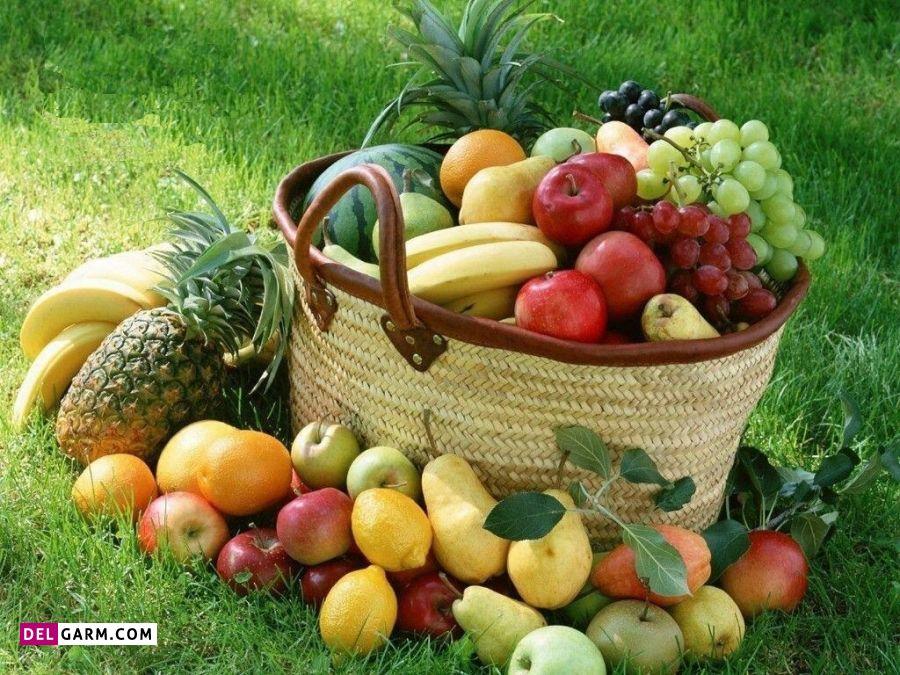 12. میوه جات