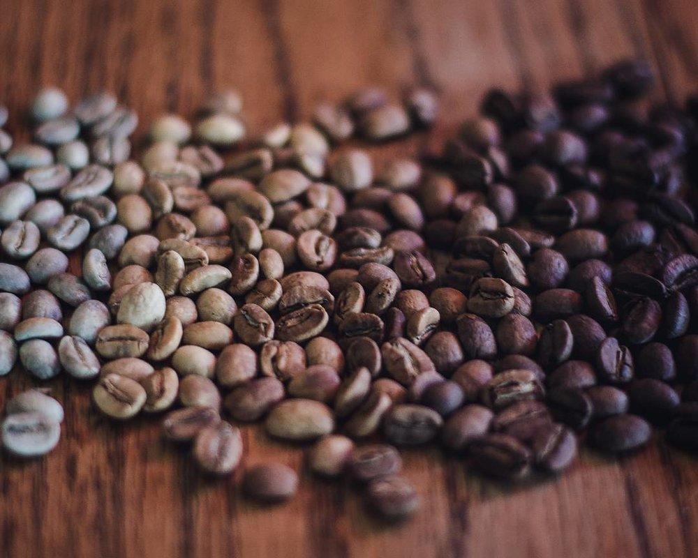 مراحل تولید قهوه پی بی