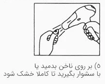 2 روش استفاده از لنز ناخن روی لاک معمولی و لاک ژل
