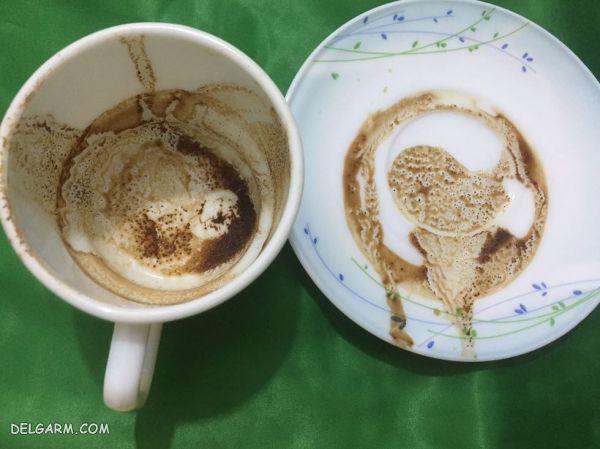 عکس موش در فال قهوه