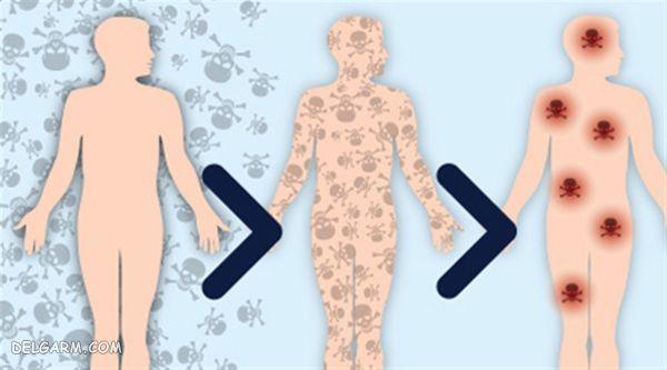 از بین بردن سموم بدن از خواص برگ های هویج