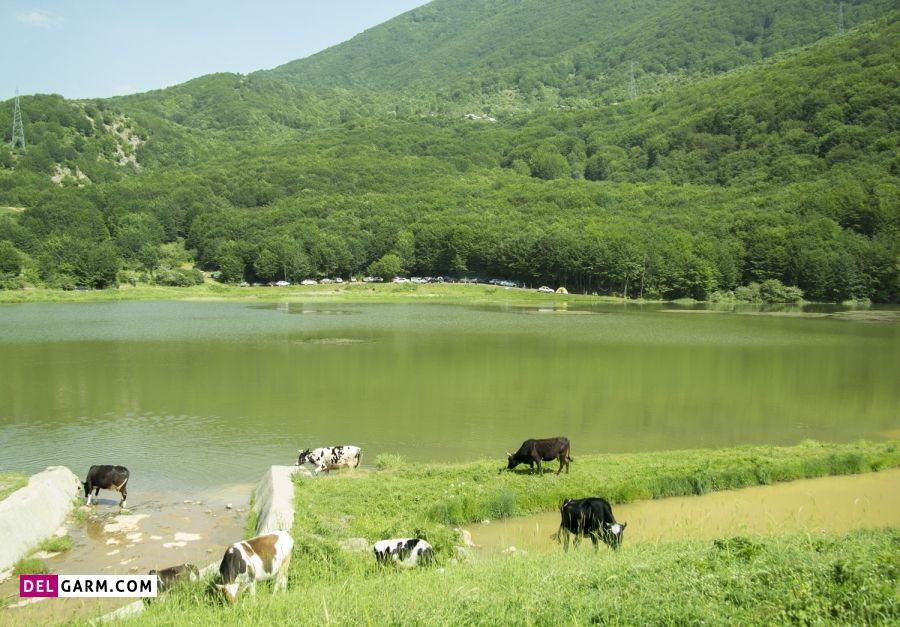 دریاچه یسان کجاست