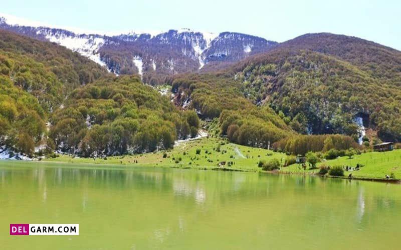 دریاچه یسان با گل های نایاب و بی نظیری به نام سوسن چلچراغ