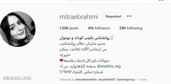 بیوگرافی میترا ابراهیمی