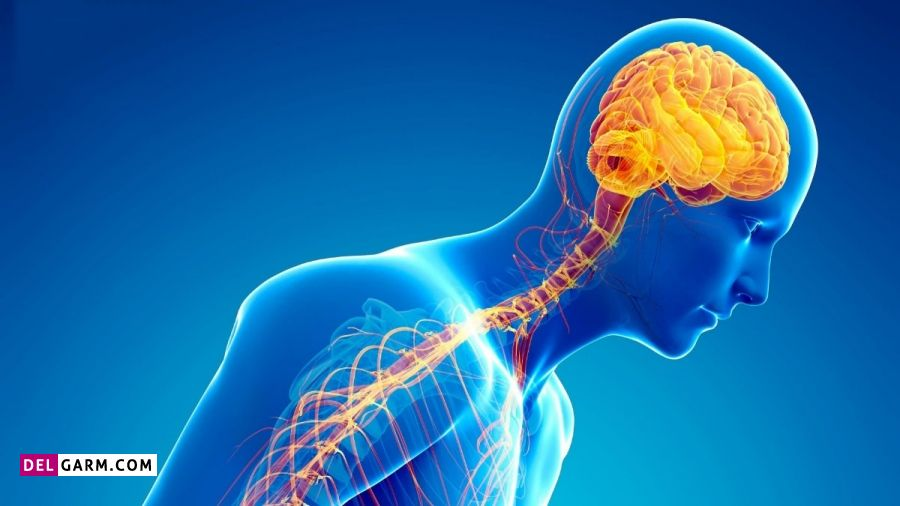 عکس بیماری پارکینسون - عاقبت بیماری پارکینسون - درمان بیماری پارکینسون - بیماری پارکینسون خفیف