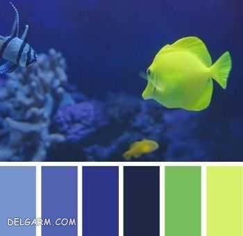 آبی را با چه رنگهایی ست کنیم ؟