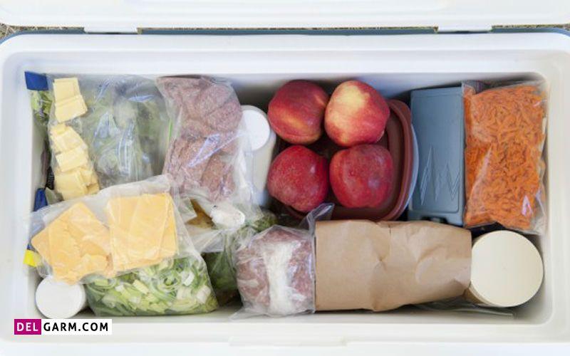 نحوه مراقبت از غذاهای منجمد در سفر