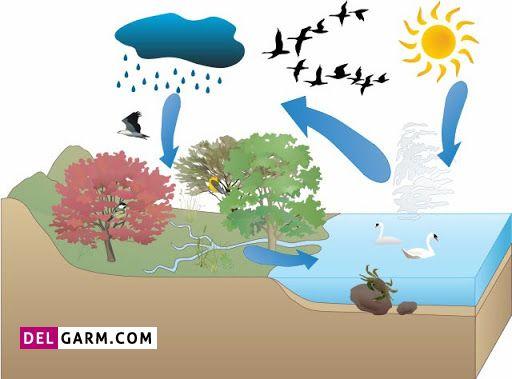 نحوه تشکیل باران