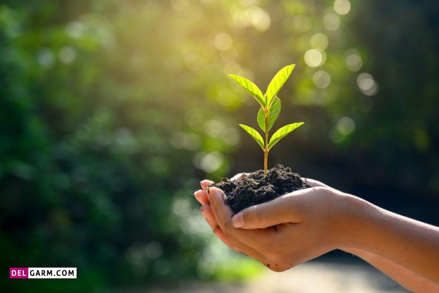 انشا برای روز محیط زیست