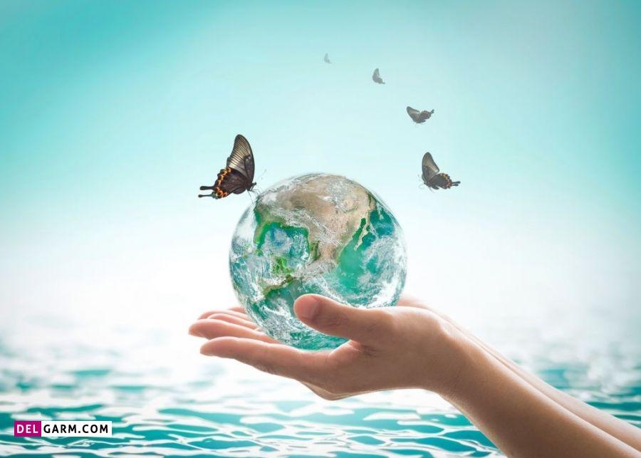 انشا درباره محیط زیت و حفظ آن