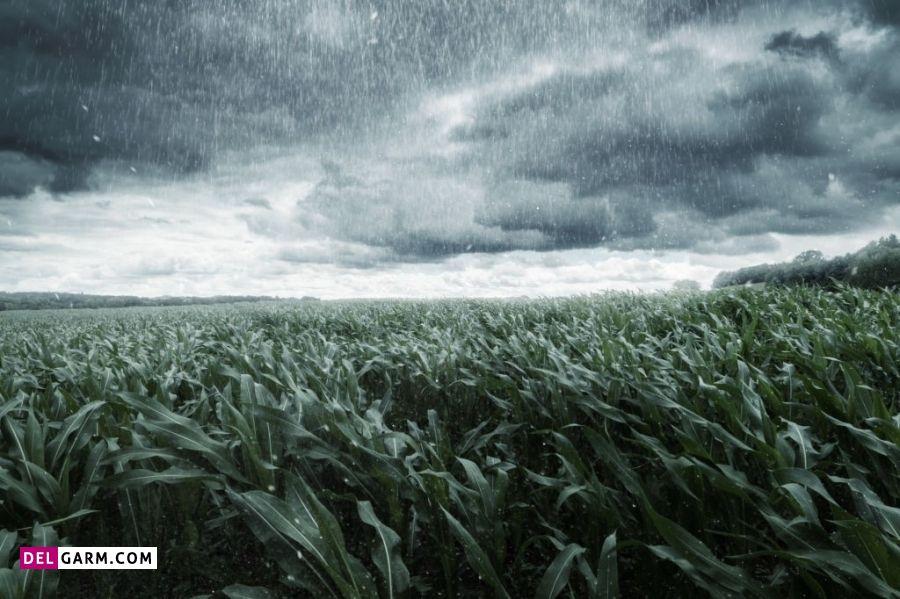 انشا درباره باران