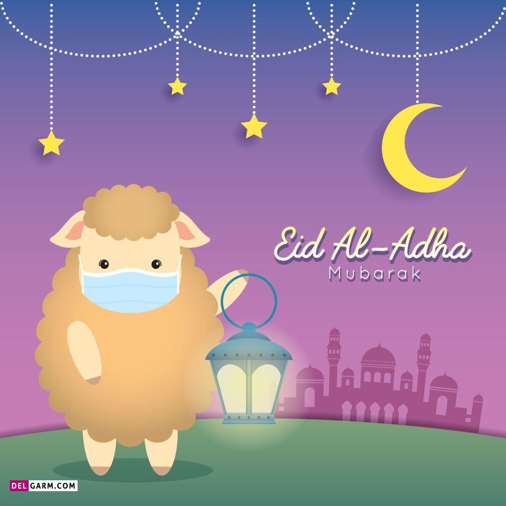 عکس گوسفند عید قربان