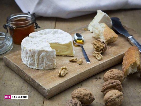 طبع پنیر