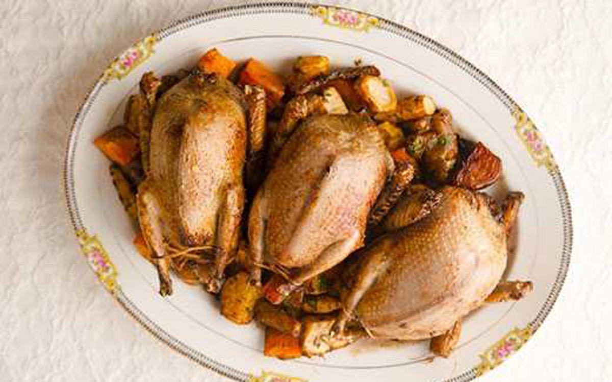 خواص گوشت کبوتر