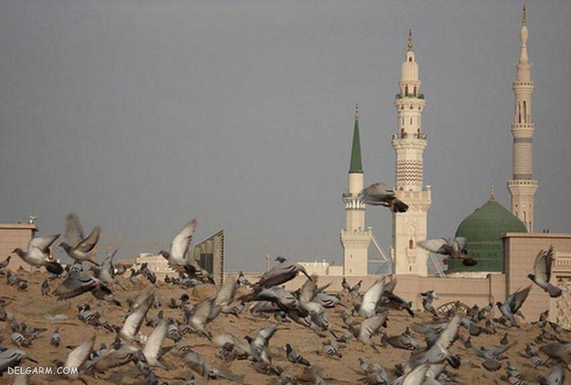 عکس مسجد مدینه