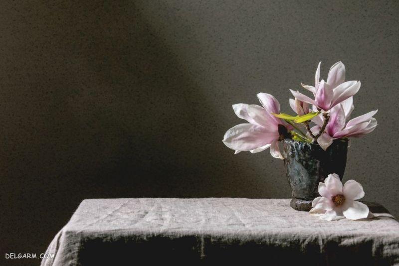 والپیپر گل زیبا