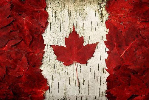 گروه+تلگرام+کانادا