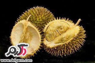 عجیب ترین غذاهای دنیا
