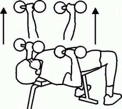 تمرین هایی برای سفت کردن و کوچک کردن سینه ها