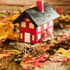 آماده سازی خانه برای مقابله با آلرژی پاییز