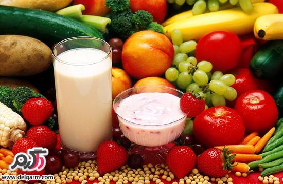 دلایل گیاهخوار بودن انسان