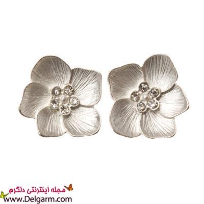 گل گوش های ظریف و دخترانه