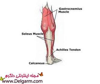 تقویت عضلات ساق پا با ۵ تمرین