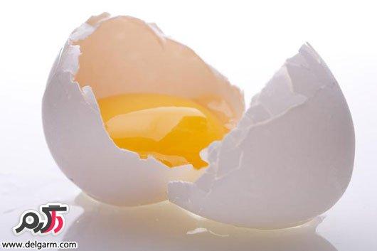 خاصیت زده تخم مرغ چیست؟ سفیده بهتر است یا زرده؟