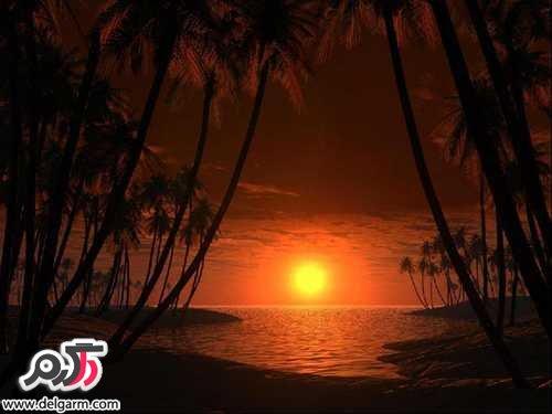 عکس هایی از  غروب خورشید
