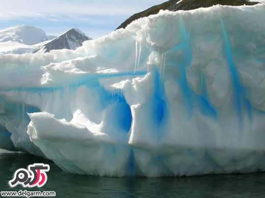 عکسهای زیبای توده های یخ شناور قطبی