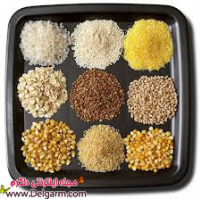 کاهش وزن با این 5 نوع غذا