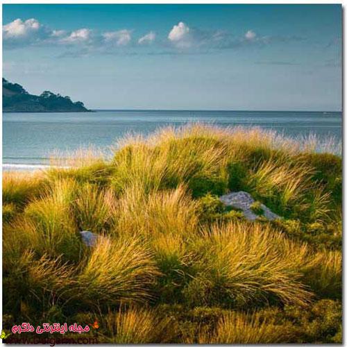 تصاویری از طبیعت بسیار زیبای نیوزیلند