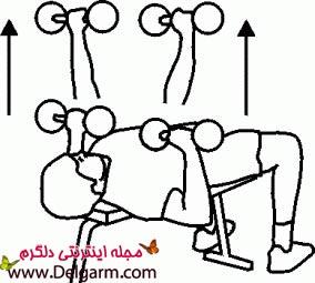 ورزش هایی برای سفت کردن و کوچک کردن سینه ها + عکس