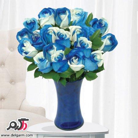 عکس گل رز آبی طبیعی