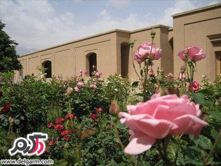 تصاویر زیبا از باغ پهلوان پور مهریز