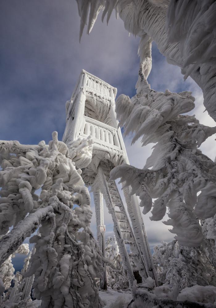 تصاویر زیبا از مجسمه های یخی طبیعی و دست ساز