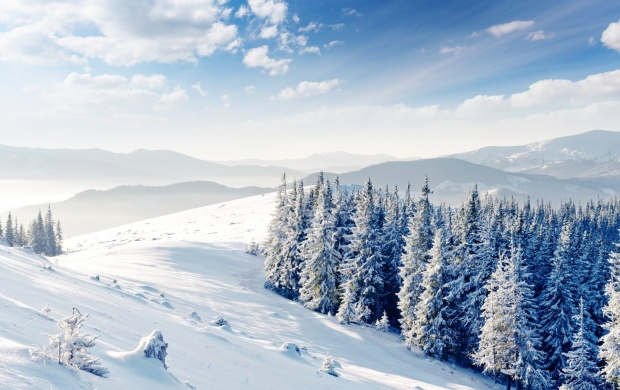 تصاویر زیبا از زمستان سری هفتم