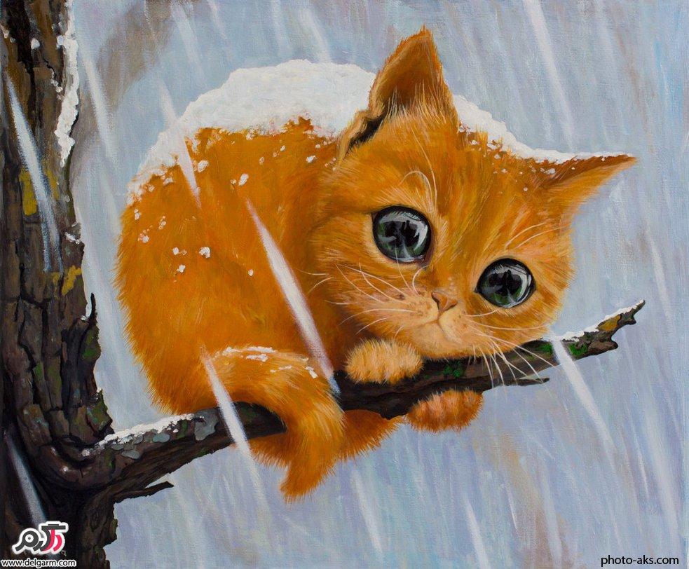 قصه ی زیبا گربه تنها