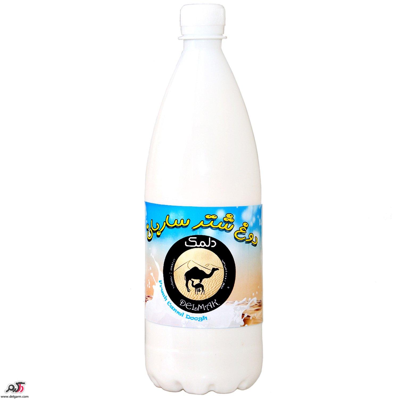 شیر شتر