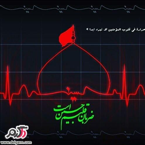 عکس های زیبا مناسب پروفایل از اسم و حرم امام حسین