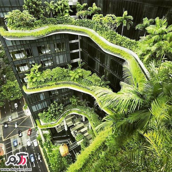 جاذبه برتر سنگاپور,سنگاپور,دیدنی های سنگاپور