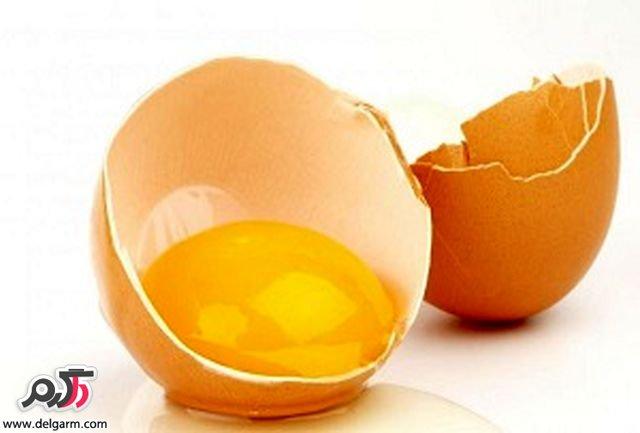 نکاتی جالب در مورد پوست تخم مرغ