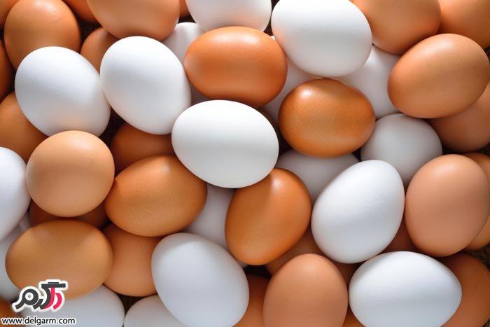 فواید تخم مرغ برای سلامتی