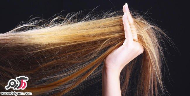 علت و درمان مو خوره