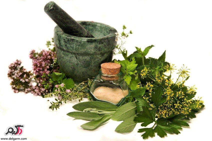 گیاهان ضدسرطان را بشناسید