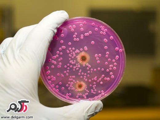 عفونت ها مي توانند مانع بارداري گردند