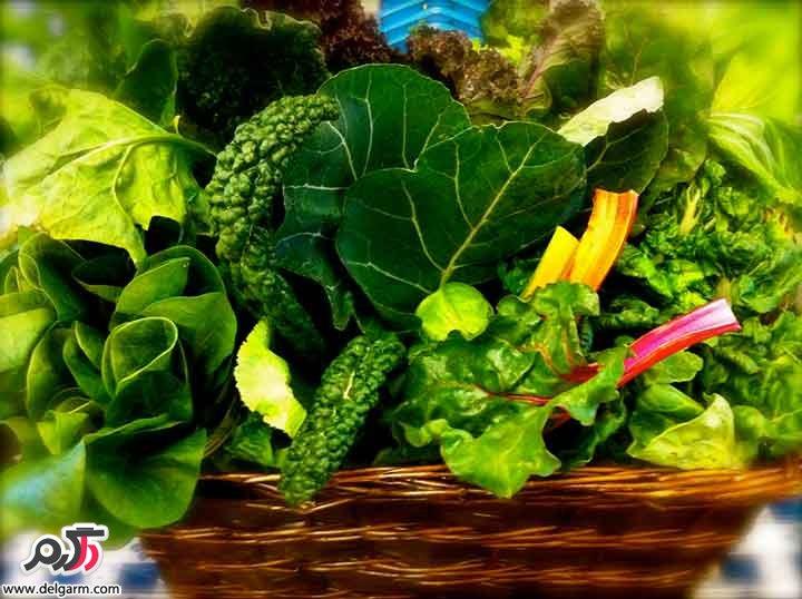 همه آنچه که باید در مورد خام گیاه خواری بدانید