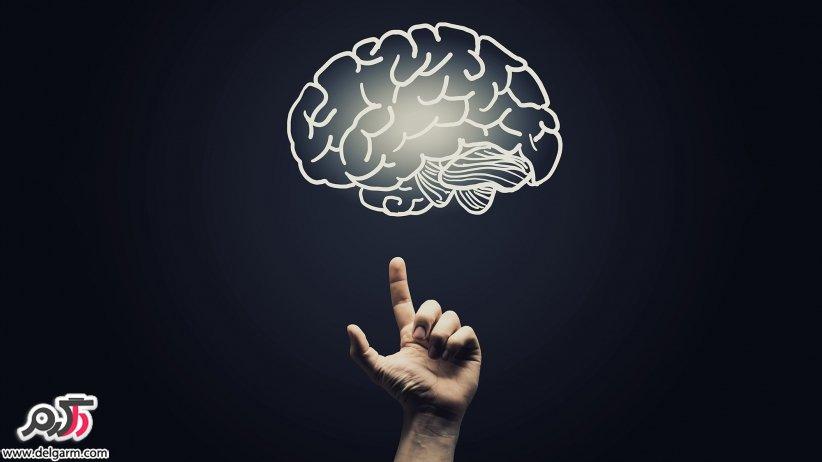 هوشیاری و مغز