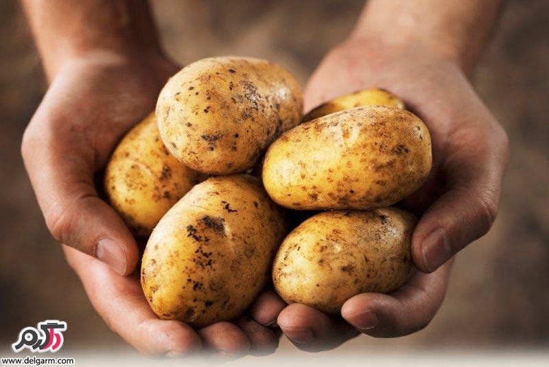 فواید بی نظیر و معجزه آسا سیب زمینی برای سلامتی