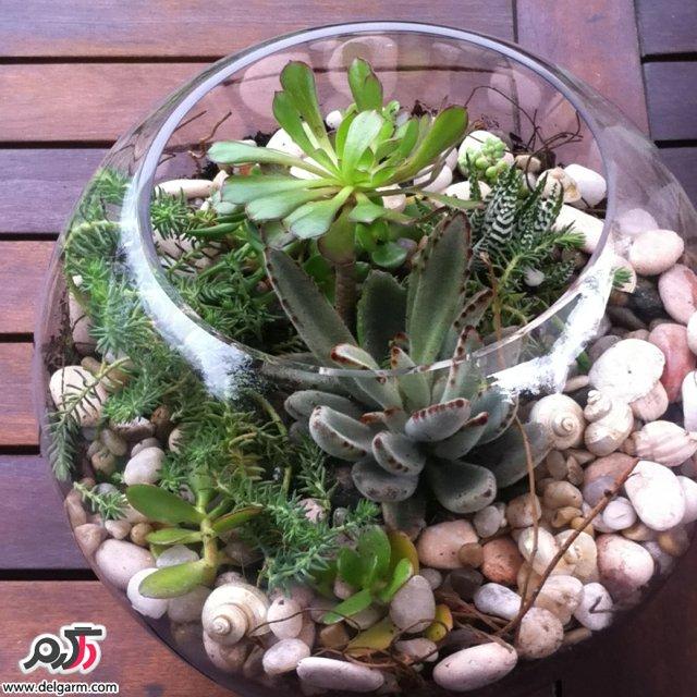 تزیین گل در تنگ شیشه ای